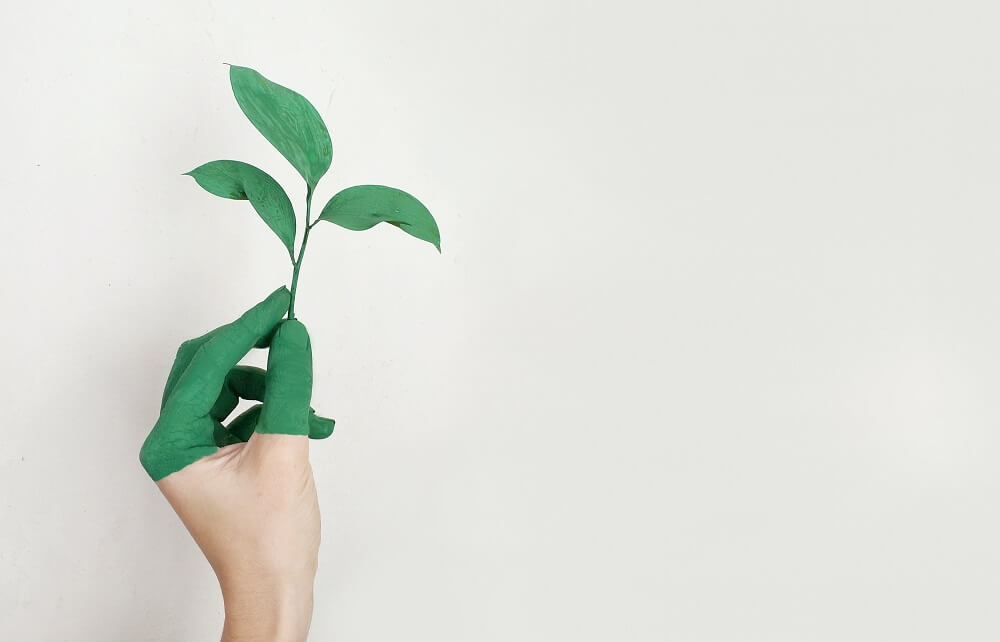 a person with green fingers holding a green leaf